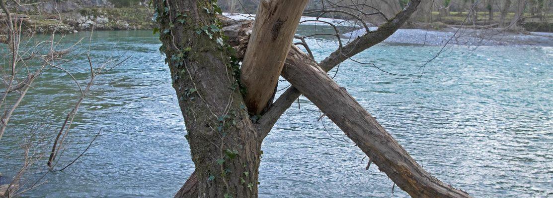 casadora rio
